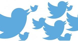 تويتر_الموظفين