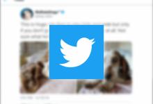 Photo of تويتر تحدّث (القوائم) بمزايا جديدة على نسخة اندرويد