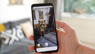 Photo of 3D Animals جوجل تتيح الان تسجيل مقطع فيديو قصير