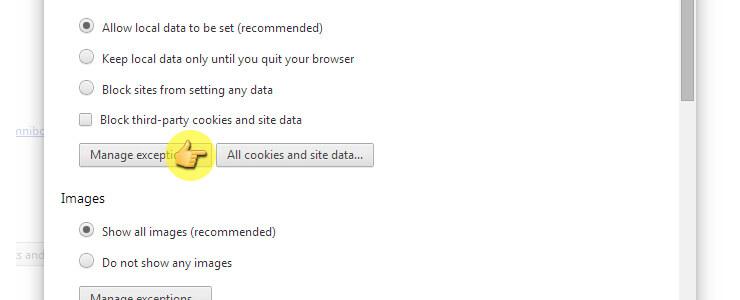 كيف تحذف ملفات الكوكيز من متصفح جوجل كروم 16