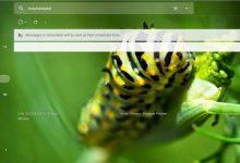 صورة Gmail : كيف تضع صورة شخصية لك كخلفية للبريد على الويب